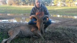 Aoudad hunts in East Texas 4P Bow Hunting Ranch